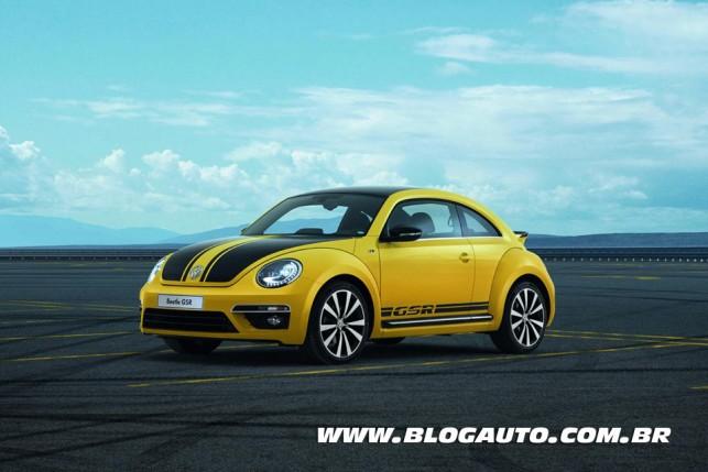 Volkswagen Fusca GSR 2013