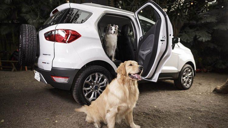 Dicas de segurança da Ford no programa Encontro EcoSport