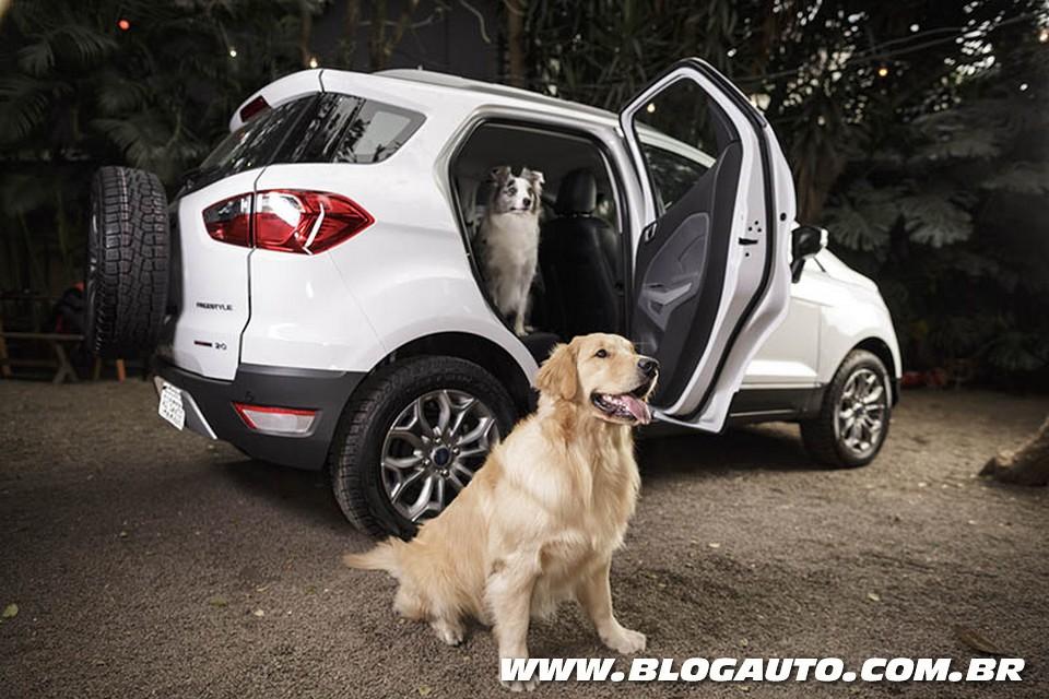 Ford mostra como transportar cães no carro